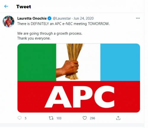 1625825691 732 BUSTED Document Confirms Buharis Aide Onochie Lied To Senate She