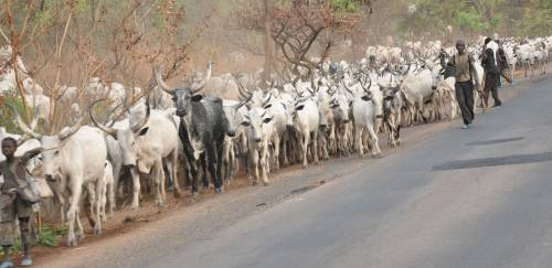 Seventeen Southern Governors Storm Lagos To Discuss Open Grazing Ban, Insecurity